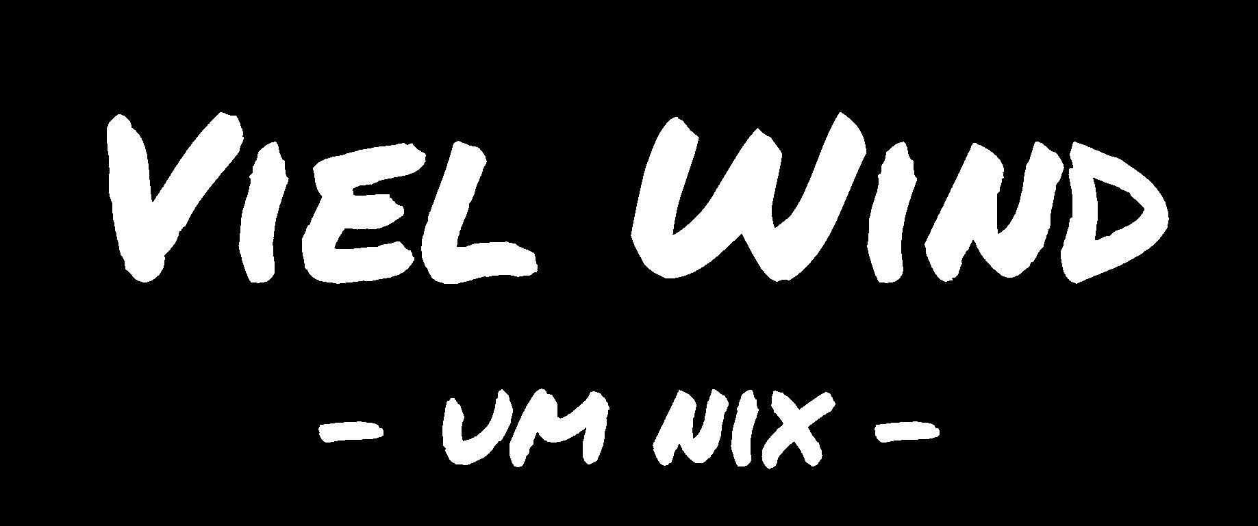 Viel Wind um nix Logo